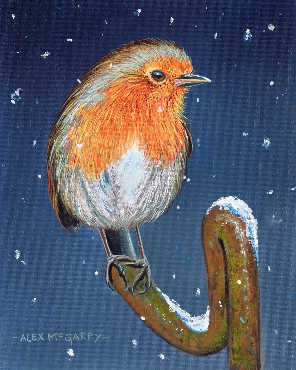 Snowy Robin III